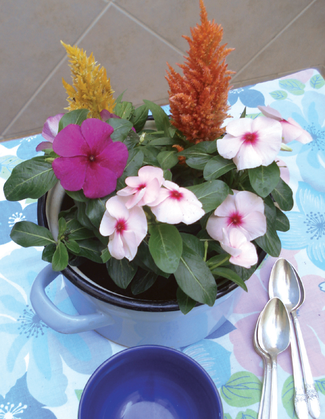 Potted Flowers Make Great Summer Centerpieces! - creative jewish mom