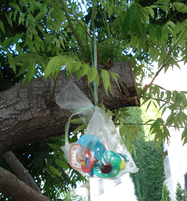 Pacifiers Hanging On Tree2
