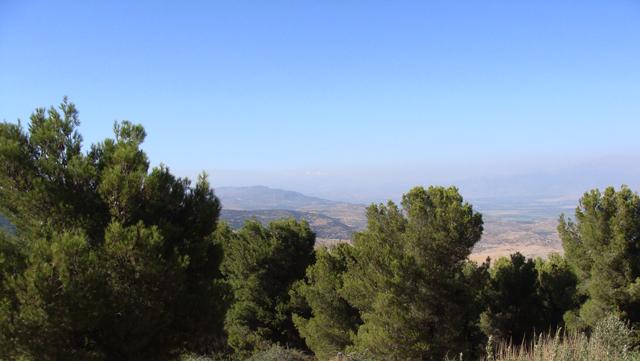 BatYaar View