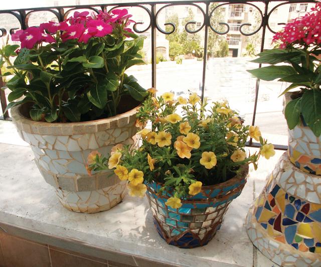 Mosaic group of pots