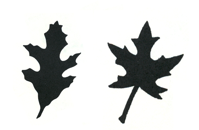 Nature Silhouettes Leaves