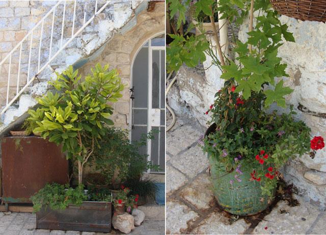 Container-Garden-Creative