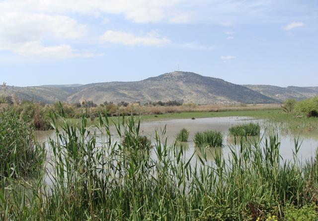 Hula Lake 2