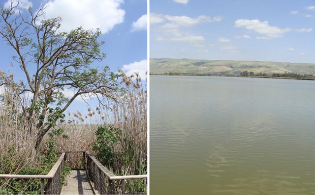 Hula Lake 4