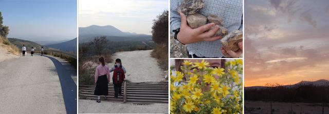 Designing Mom Walk In Nature