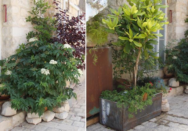 Container Gardening Creative 2