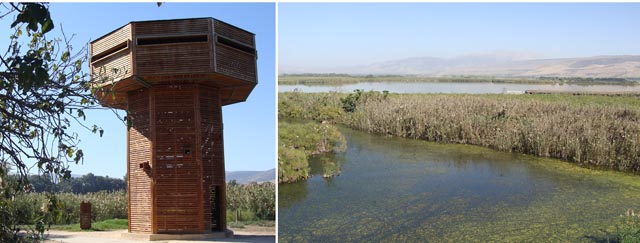 Hula Nature Reserve Fall Observation Tower