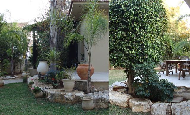 Slice Of Life Israeli Garden In Hadera2