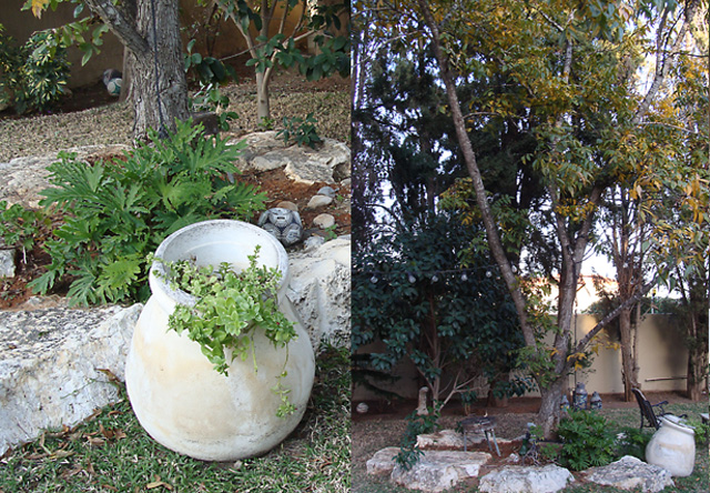 Slice of life-israeli garden in hadera3