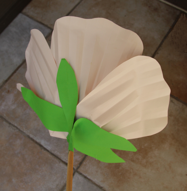 Paper Flower Giant Bottom View