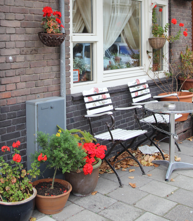 Container gardening in holland on the street