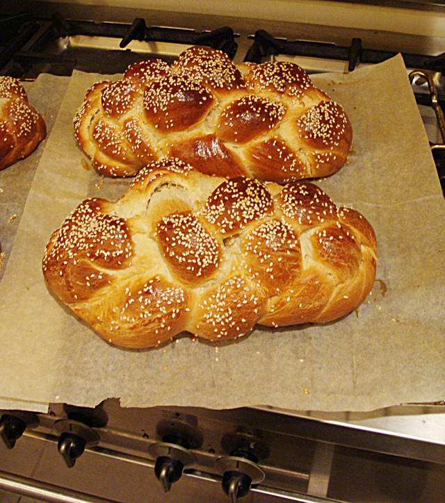 Challah Loaves-6 strand braid
