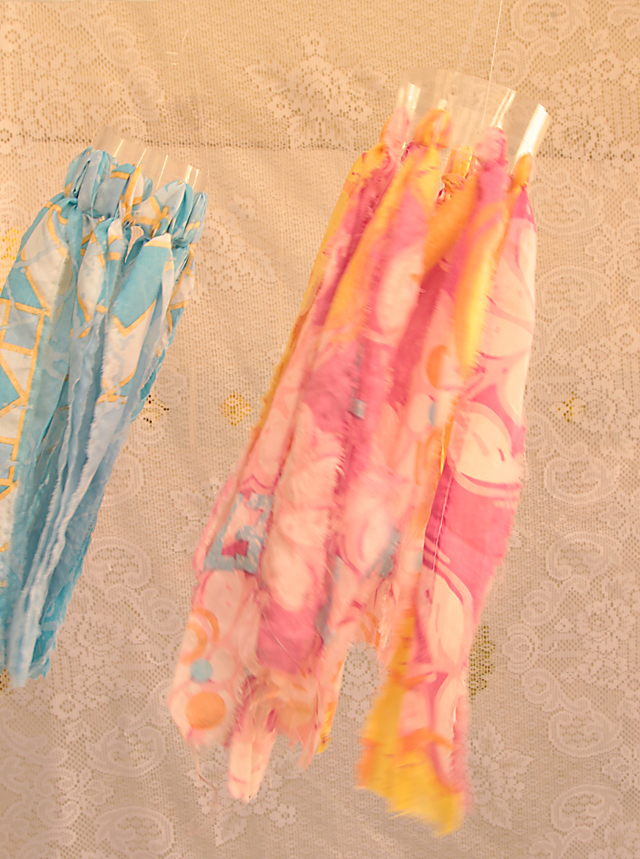 Plastic Bottle wind socks