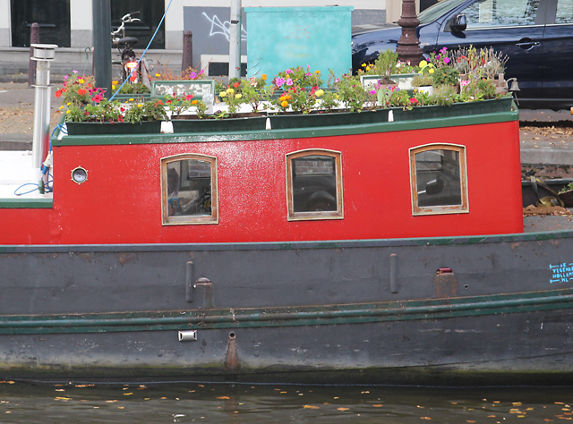 Container Gardening in Holland Houseboat