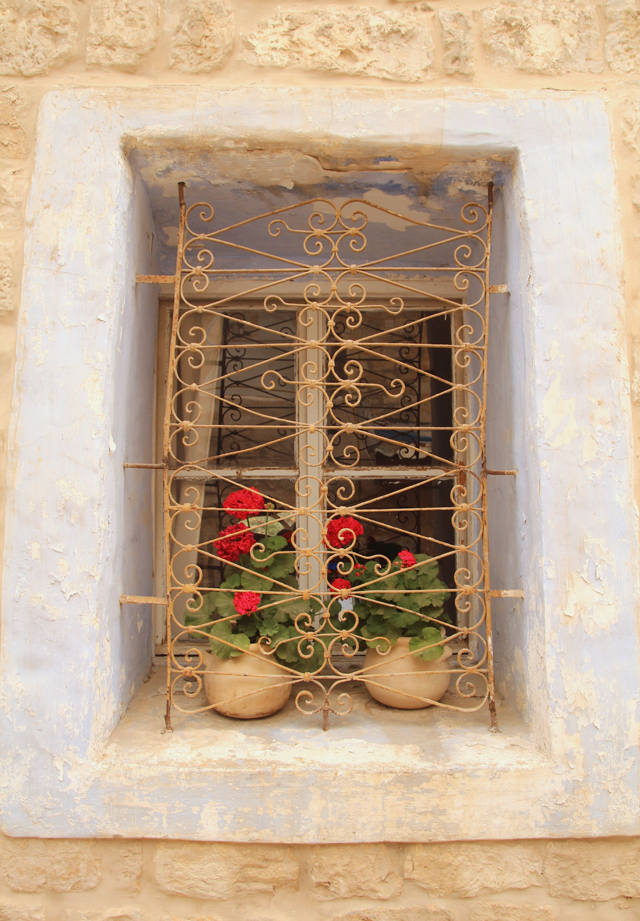 Geraniums in Tall Window