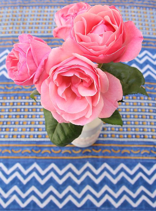 Cutting Garden Pink Roses