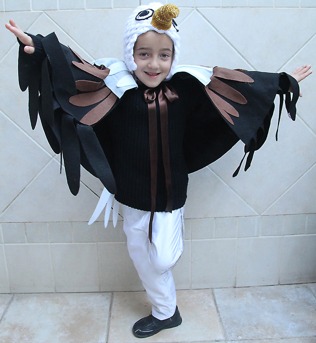 Purim Eagle Costume Front