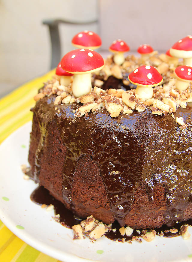 Mushroom Chocolate Cake Closeup