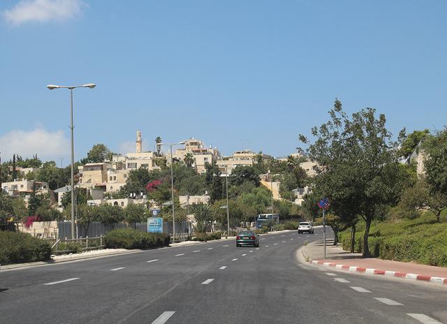 Jerusalem zoo on the way 1