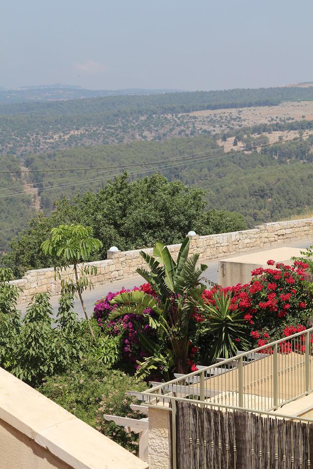 Garden In Northern Israel