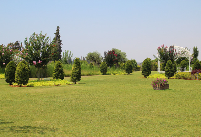 Garden in Emek Hefer 2