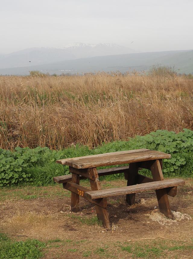 Hula Valley Lake Picnic Spot