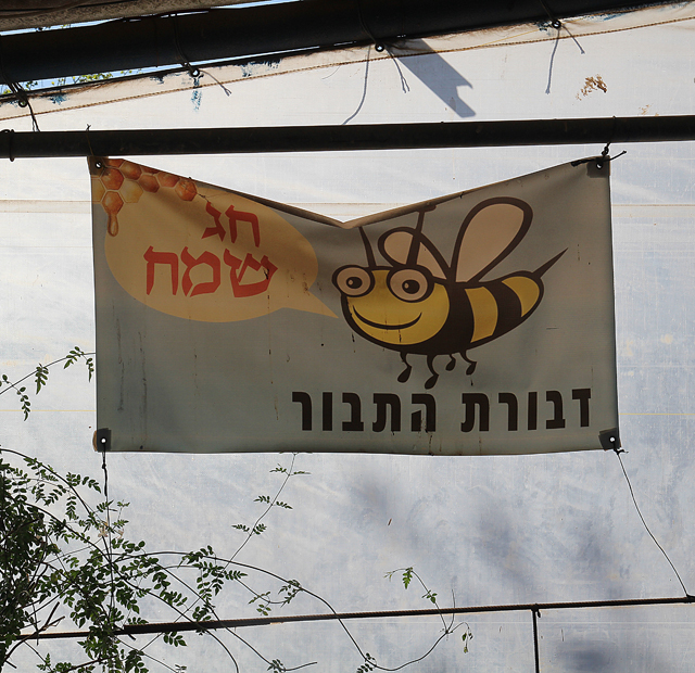 Mount Tabor devorat hatabor pesach sign