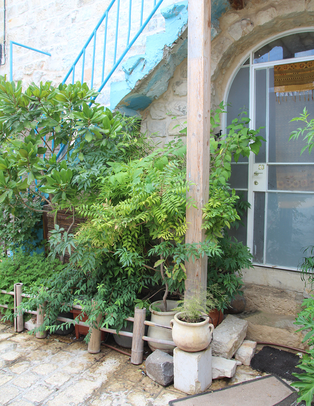 Container Gardening Cobblestone street israel 4