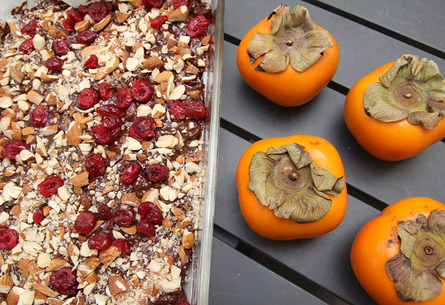 Chocolate Almond Cranberry Bark