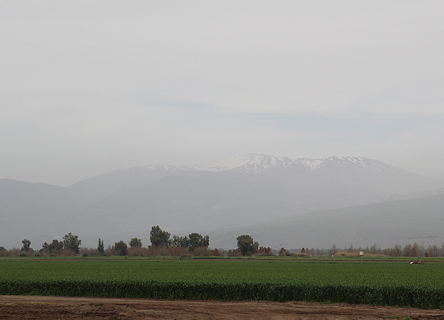 Hula Valley View of Mt. Hermon