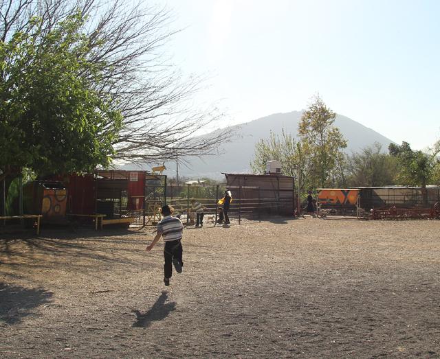 Mount Tabor devorat hatavor goat yard