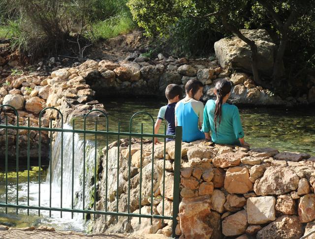 Hemdat Yamim Stream,Shefer, Israel
