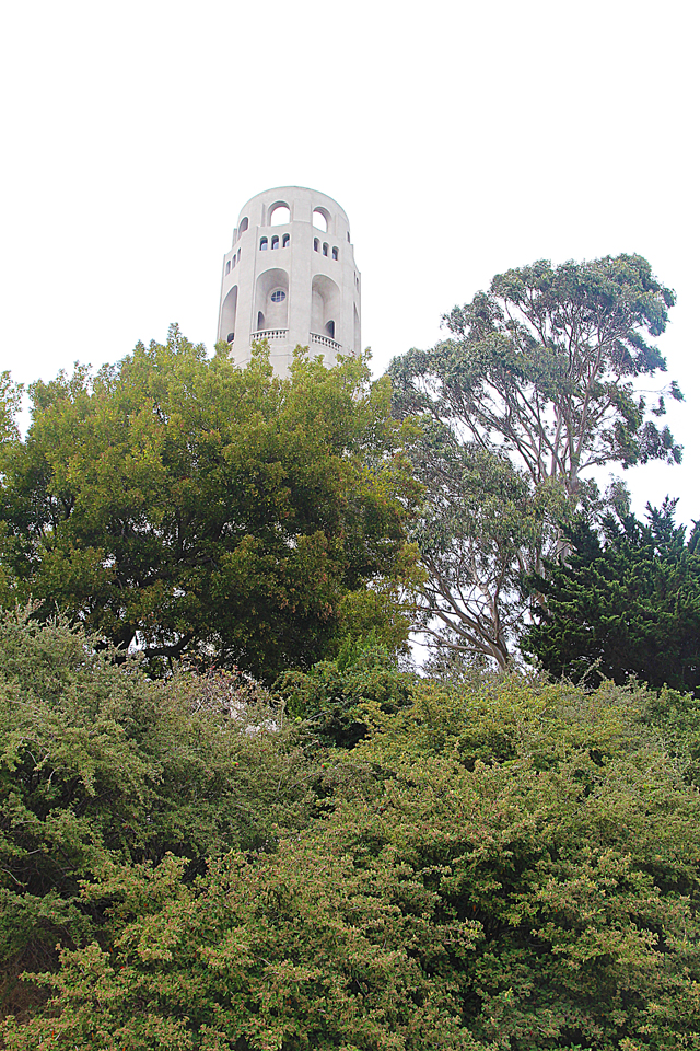 Filbert steps view of Coit Tower