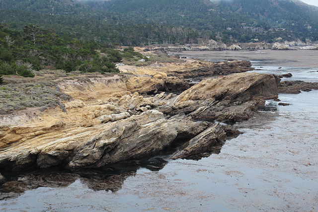 Point Lobos Looking Toward Big Sur
