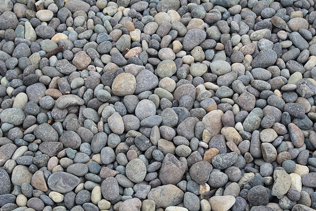 Point Lobos Pebbles Close Up