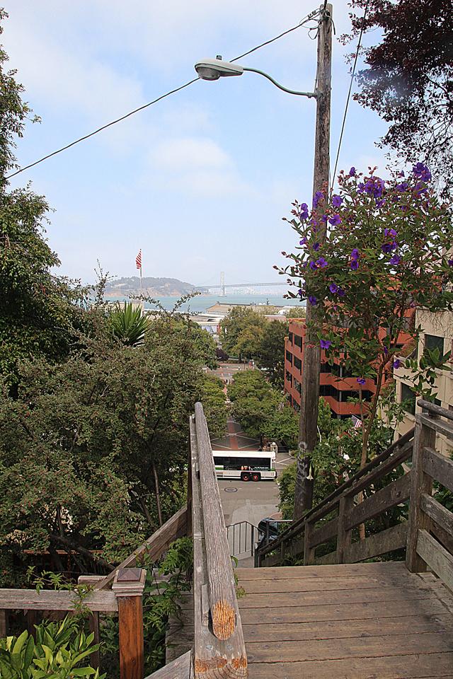 Filbert Steps Looking At SF Bay