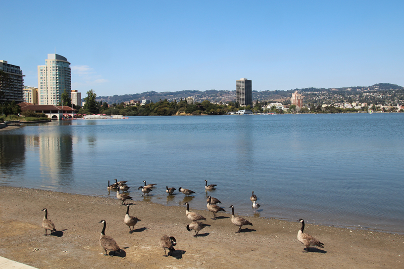 Lake Merrit Looking East