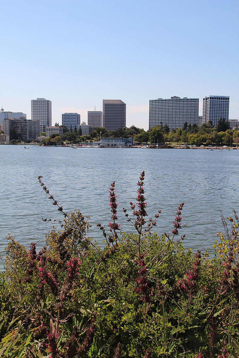 Lake Merrit Looking Towards Downtown