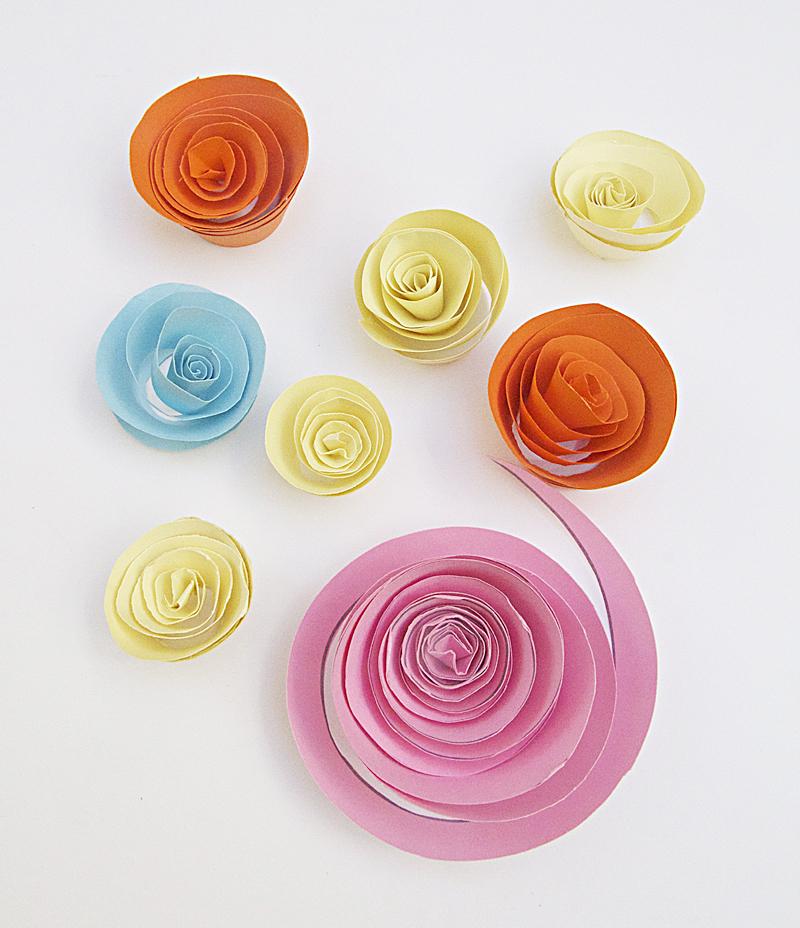 Paper Rosebuds in several sizes