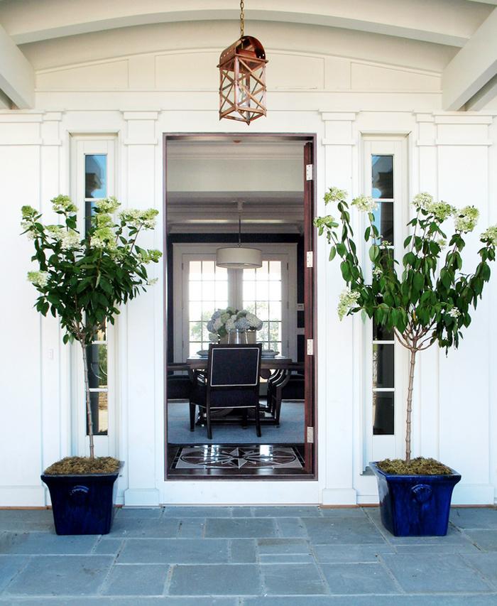 Plants As Party Decor Hydrangeas