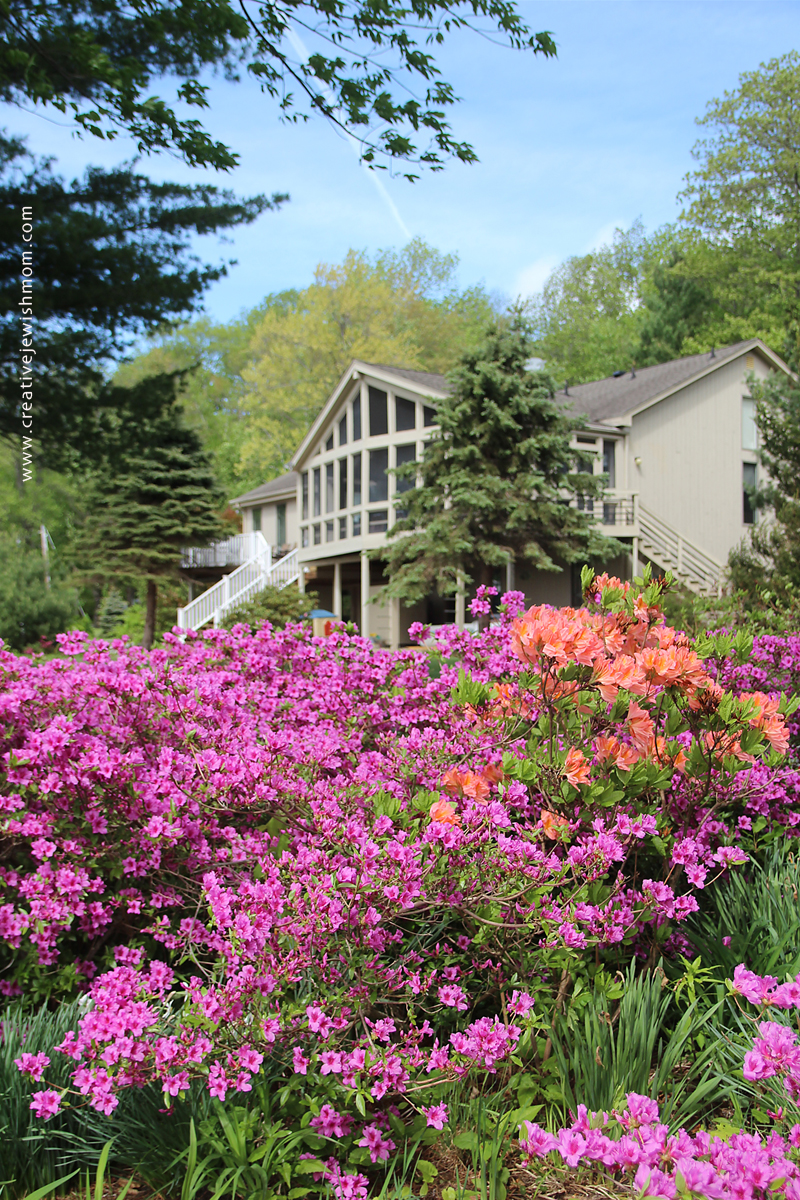 Connecticut Lake House With blooming Azalea bushes May 2015