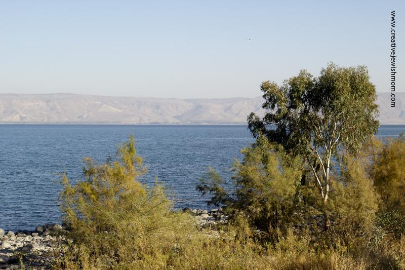Tiberius Lake Looking Across