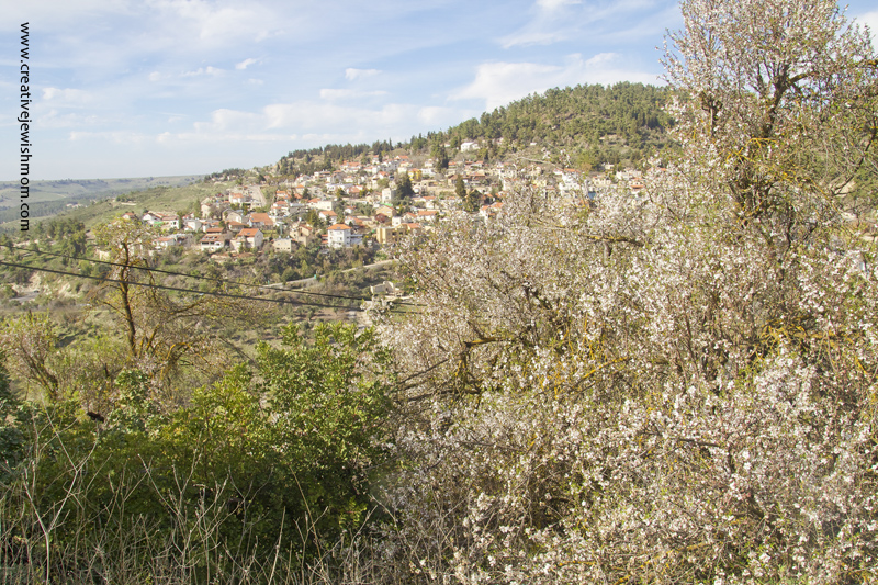 Almond Blossoms With Village of Birya