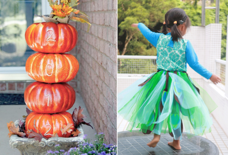 Peacock tutu,pumpkin house number
