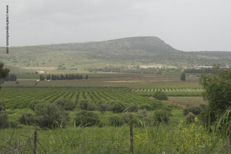Devorah Burial Site View From Tel Kedesh