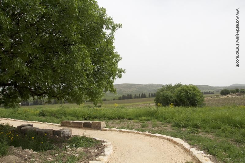Deborah Gravesite Trail Around Tel Kedesh