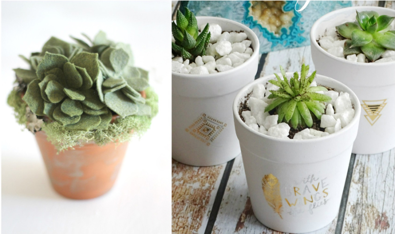 DIY felt succulents rub on tattoos on plant pot