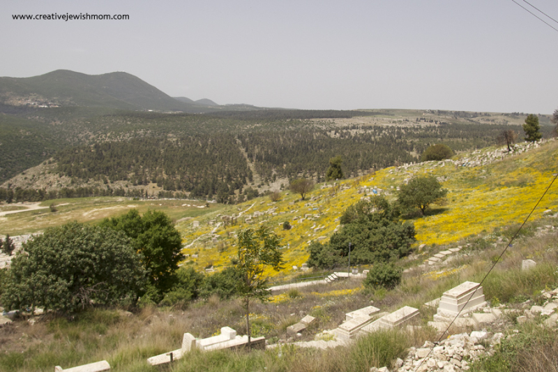 Old cemetary Tzfat With Meron View