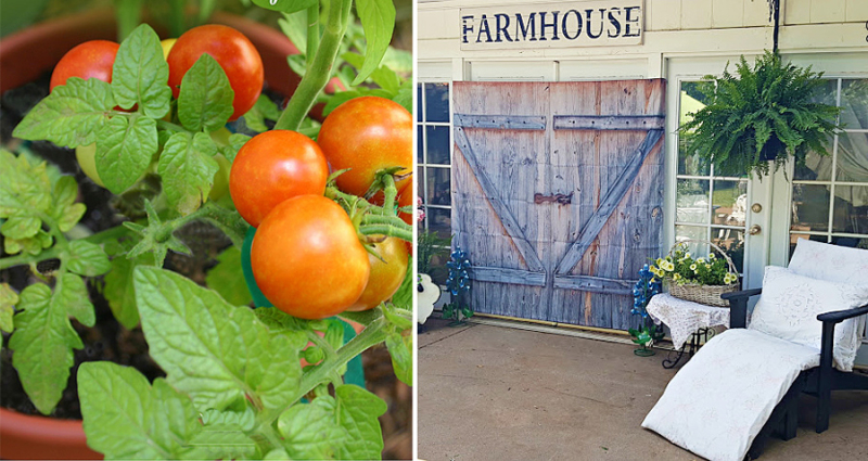 Farmhouse doors from shower curtains natural bug spray for tomato plants