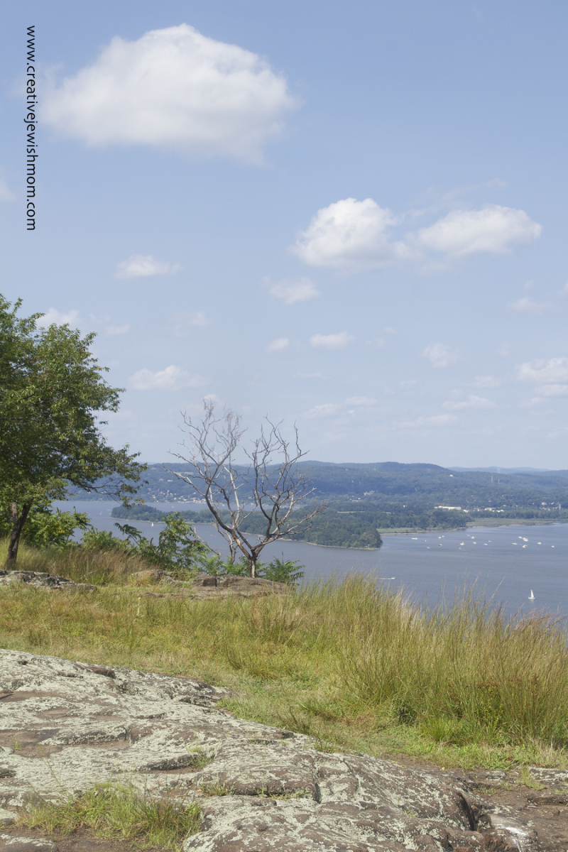 Hudson River View from Hook Mountain looking north
